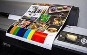 Film Developing and Photo Printing Services in Sydney